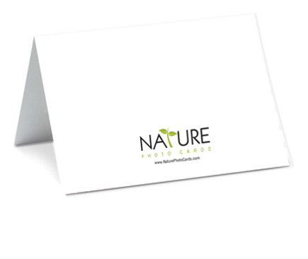 Photo greeting cards faq photo greeting cards the back of our nature photo cards have a small logo at the bottom otherwise the card is blank and white you can view a picture of the back of our cards m4hsunfo